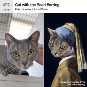cat pearl earing