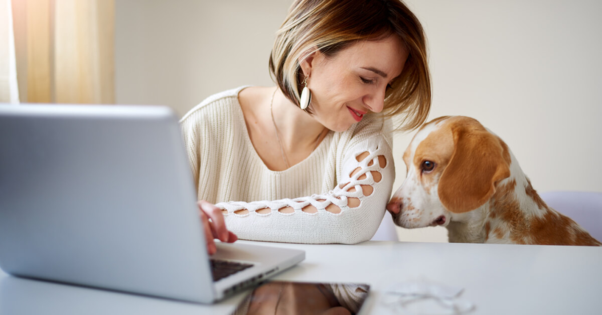 pet business insights