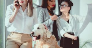 pet business leadership