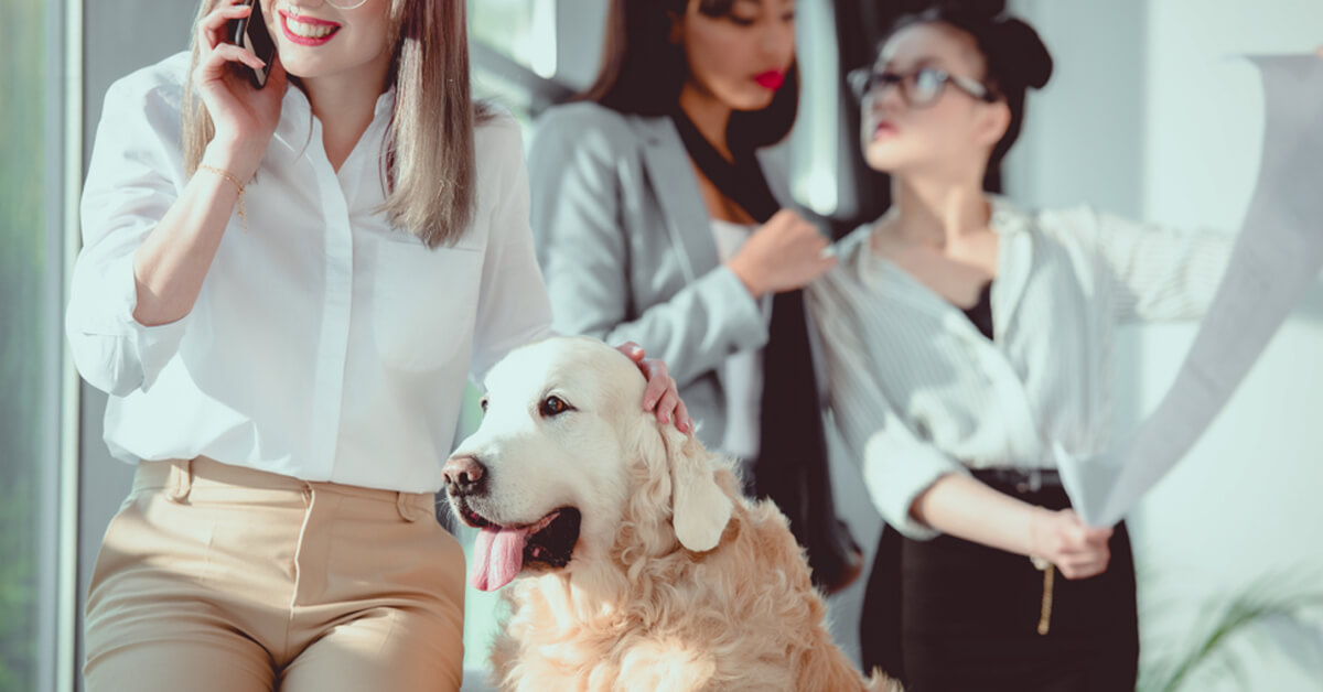 What Leads to Long-term Careers and Leadership in the Pet