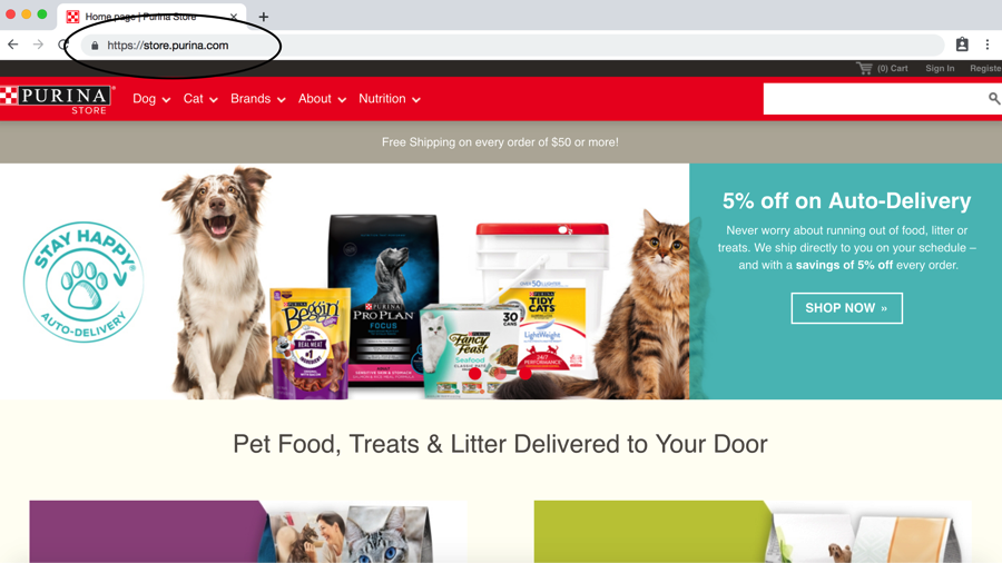 URLs, Subdomains & Subfolders For Pet Businesses: What Are They and
